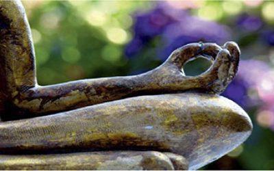 LuJong Yoga en Buchinger Wilhlemi Marbella